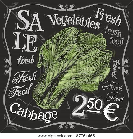 ripe cabbage vector logo design template. fresh food, vegetables  or menu board icon.