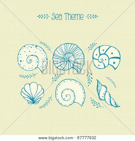 Set Of Vector Objects Ammonites And Sea Shells In Sketch Style