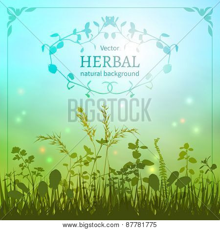 Delicate herbal background