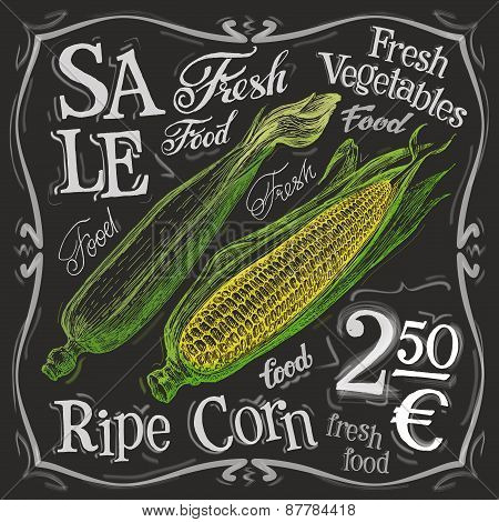 ripe corn vector logo design template. fresh food, vegetables or menu board icon.