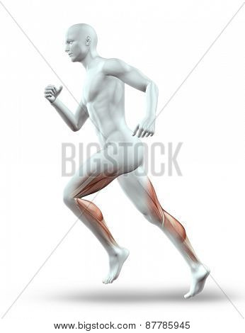3D render of a male figure running with leg muscles showing