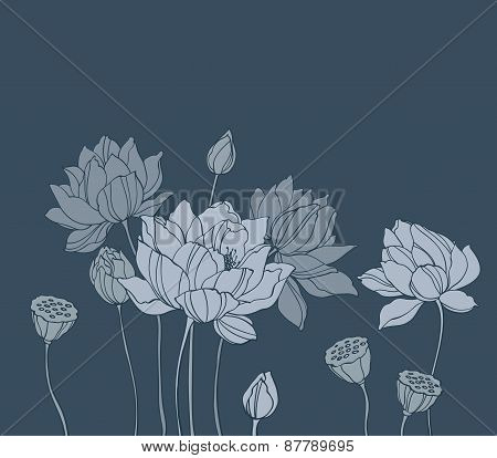 Simple Vector Lotus On Black Background Horizontal