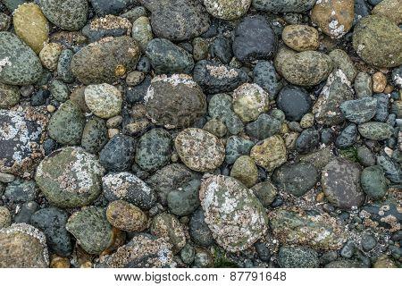 Seabed Rocks
