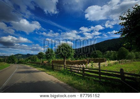 Traditional romanian village, viewed on a clear summer day