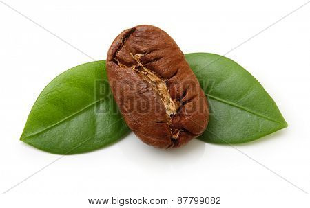 Black coffee bean with green leaf isolated on white background.