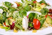 Постер, плакат: Salad with mozzarella and tomatoes