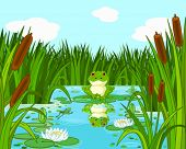 image of mace  - Illustration of a pond scene with frog sits on the lily - JPG