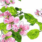 pic of apple blossom  - vector seamless pattern with spring flowers of apple tree - JPG