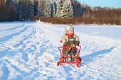 stock photo of jumpsuits  - Little boy wearing warm jumpsuit stands with sled on snow near forest at winter - JPG