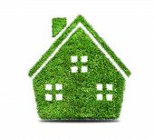 picture of ecosystem  - Grass home icon isolated on white background - JPG