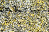 image of deformed  - fragment of a concrete wall - JPG