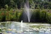 stock photo of fountains  - Beautiful Formal Garden with fountain and flower - JPG