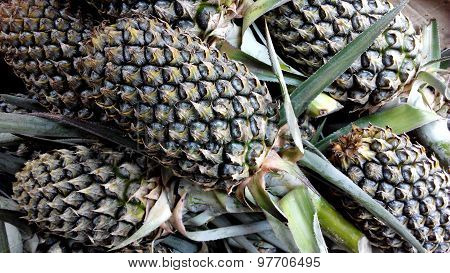 Pineapples At Fruit Market.