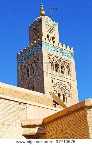 In Maroc Africa Minaret And The Satellite Dish