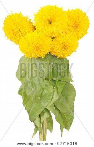 Decorative Sunflower Bouquet