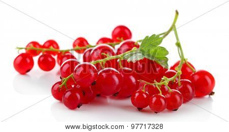 Branch of red currant with green leaf isolated on white