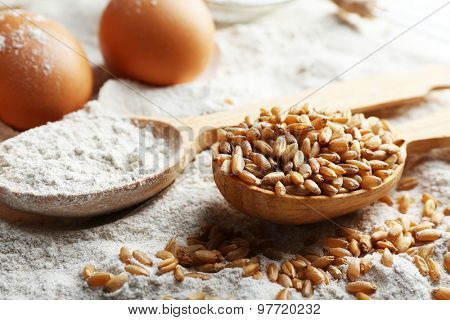 Wheat and eggs on white flour background