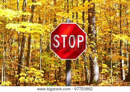 Autumn scene with road and stop sign in forest