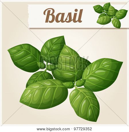 Basil leaves. Detailed Vector Icon