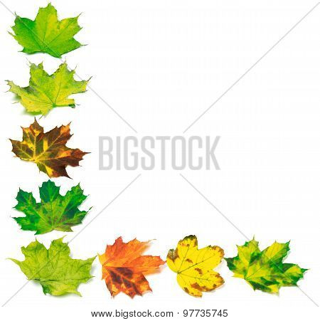 Letter L Composed Of Multicolor Maple Leafs