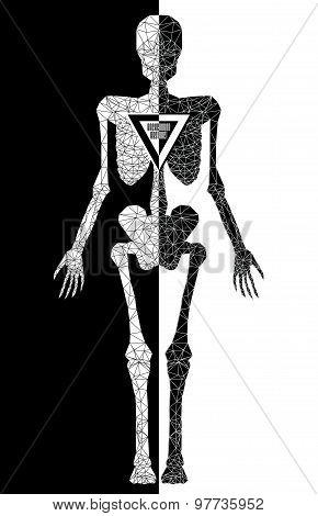 Abstract polygonal skeleton