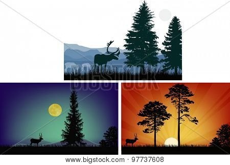 illustration with deers in landscapes