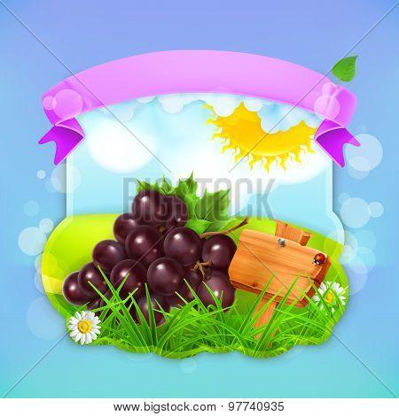 Fresh fruit label grape, vector illustration background for making design of a juice pack, jam jar etc