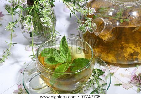 Tea From Gathering Of Medicative Herbs And Mint In A Transparent Cup