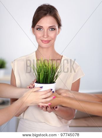 Beautiful woman holding pot with a plant, standing .