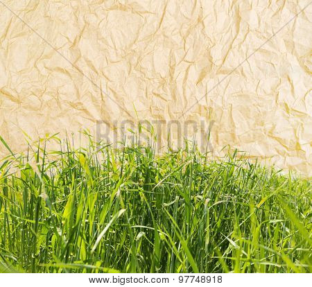 Beautiful green field on old paper texture background