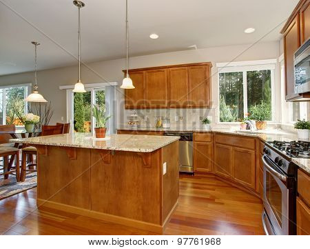 Modern Kitchen With Simple Wood Cabinets.