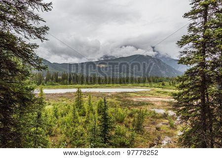 Banff Marsh Loop