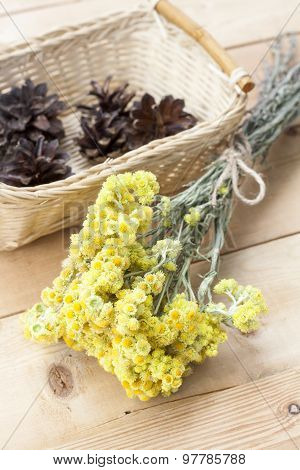 Dwarf everlast flowers bouquet and pine cones in a wicker basket on light wooden table