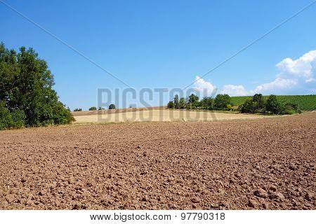 Brown Farmland