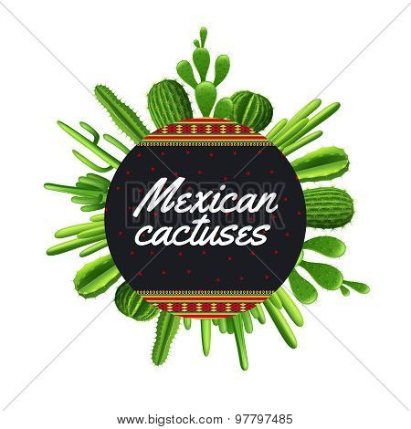 Mexican Cactus Illustration