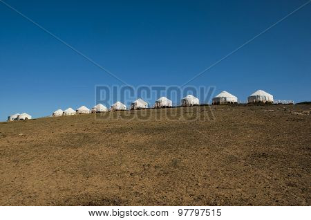 The grasslands of Mongolia