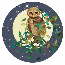 stock photo of goodnight  - Cute brown owl and big yellow moon with stars - JPG