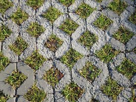 stock photo of slab  - Paving slabs paving slabs, through grass grows close up as a background ** Note: Visible grain at 100%, best at smaller sizes - JPG