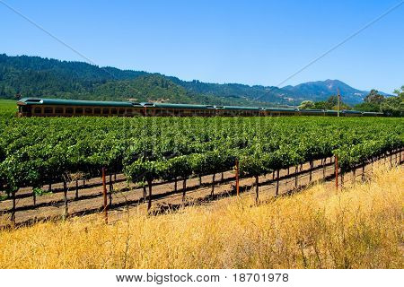 Tourist train in Napa Valley California