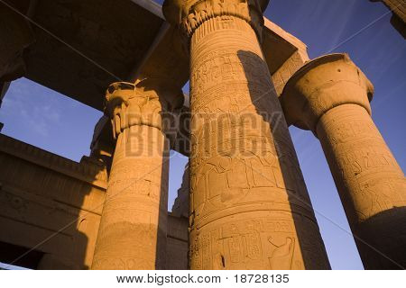 The Amazing Pillars Of Kom Ombo Temple, Egypt