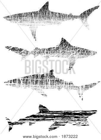 Grunge Sharks