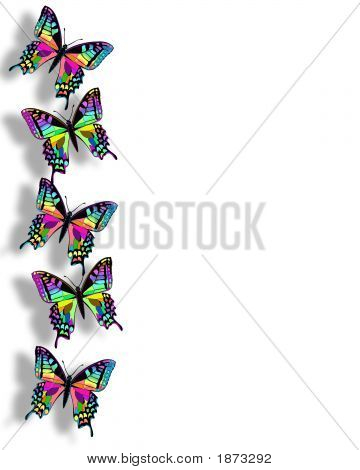 Butterfly Border Illustration