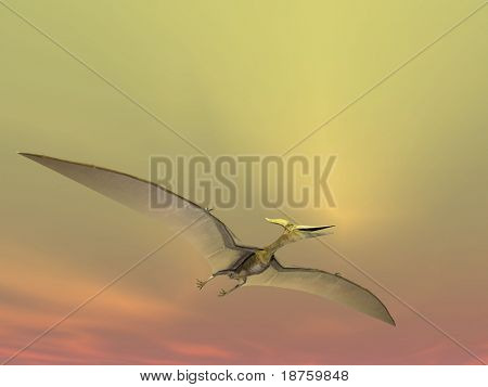 pterodactyl or pteranodon on yellow sky background