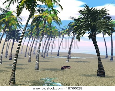 palms on sane beach - rendered with DOF