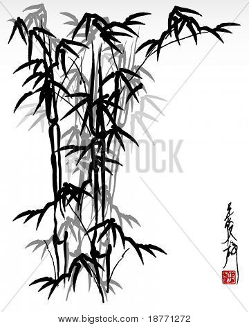vector illustration of oriental painting, bamboo