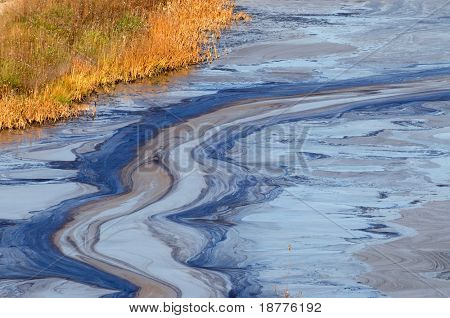 Closeup of an oil slick in water with fall colors in the grass on the shore