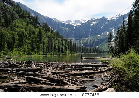 Tree trunks in the water and on shores of Avalanche Lake in the Glacier National Park in Montana, USA, with waterfalls formed by melting snow in the background.