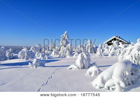 Cottage on a mountain slope in winter, with rabbit tracks in snow in the foreground