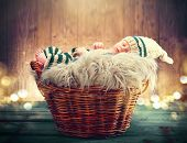 Two weeks old infant baby wearing knitted funny costume sleeping in a basket over wooden background, poster