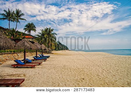 poster of Sand Tropic Palms And Sunbeds. Best Kuantan Beach Resorts. Luxury Vacation At Crystal Clear Waters A